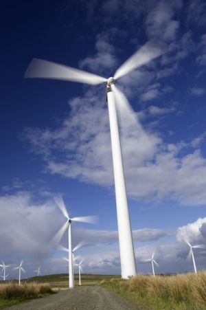 windfarm.jpg