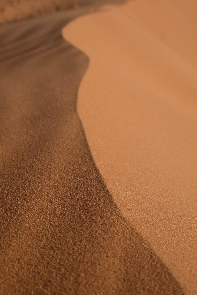 Close up of a sand dune