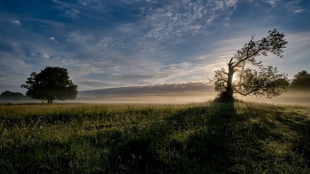 Castletown - early morning mist