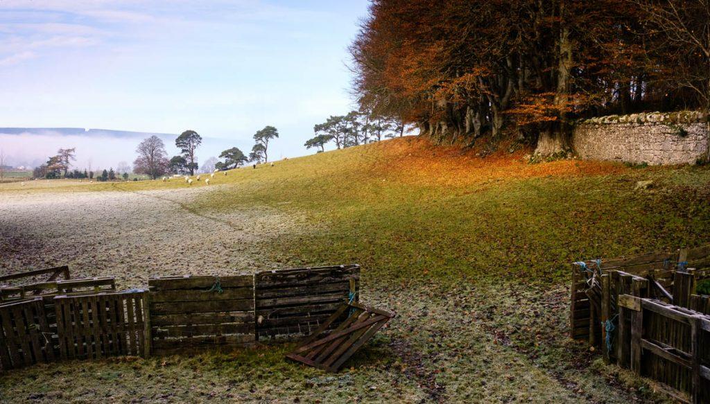 Cloughlea frosty autumn farm scene
