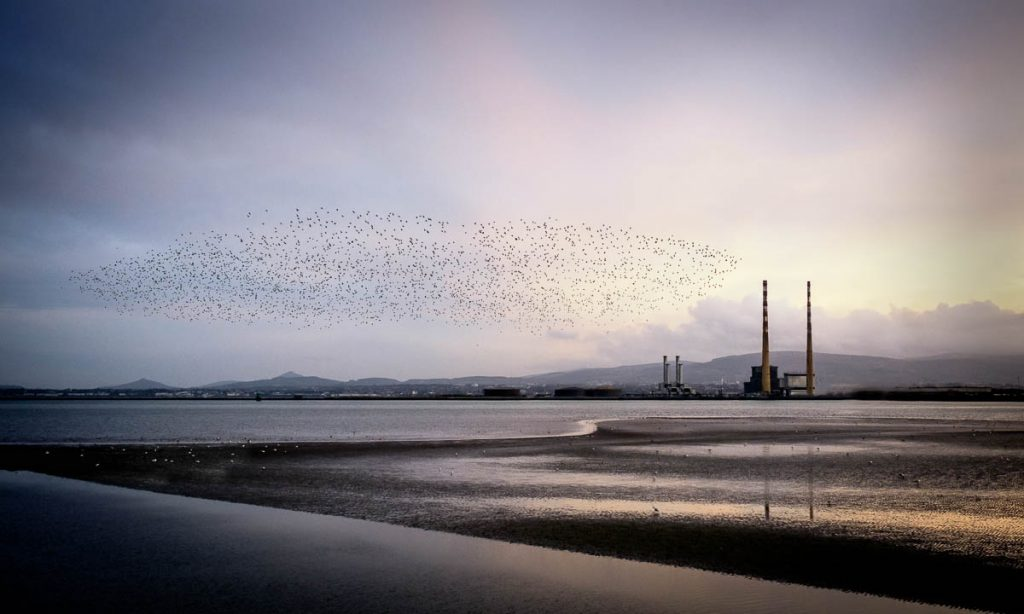 Poolbeg power station, Dublin in the evening