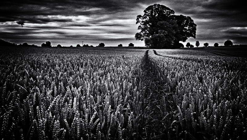 ballinafagh_crop